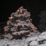 Una bella nevicata come inizio d'anno